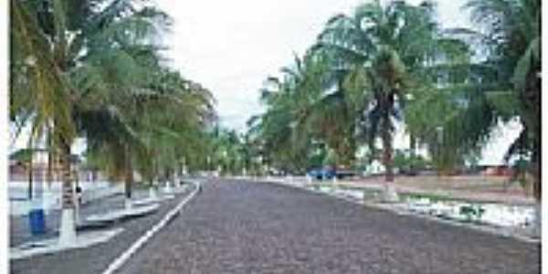 Avenida-Foto:teresaeayrton