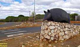 S�o Raimundo Nonato - S�o Raimundo Nonato-PI-Trevo de acesso-Foto:WLuiz
