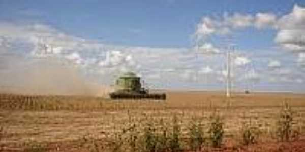 Fazenda-Foto:mfrural.com.br