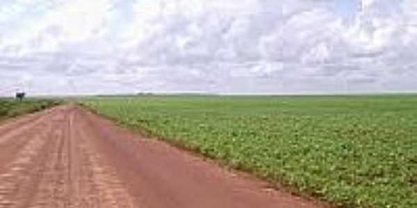 Fazenda em Sebastião Leal-Foto:mfrural.com.br
