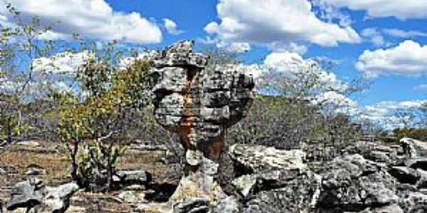 Socorro do Piauí-PI-Esculturas da Natureza-Foto:WLuiz