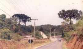 Almirante Tamandaré - Turismo Rural-Estrada da Pacotuba, Por Pedro Martim Kokuszka
