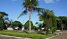 Amaporã - Coqueiros