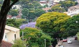 Apucarana - Apucarana-PR-Centro da cidade florido-Foto:Aluisio Ribeiro 2