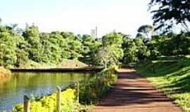 Arapongas - Parque dos Pássaros em Arapongas-Foto:josé carlos farina
