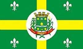 Arapoti - Bandeira da cidade