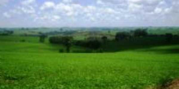 area Rural de Arapuã, Por jose Manoel