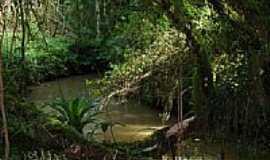 Areia Branca dos Assis - Ribeirão-Foto:rodrigo dittmar