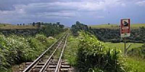 Ferrovia em Balsa Nova-PR-Foto:decio marques