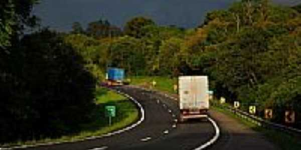 Rodovia BR-376 em Balsa Nova-PR-Foto:grafo3d