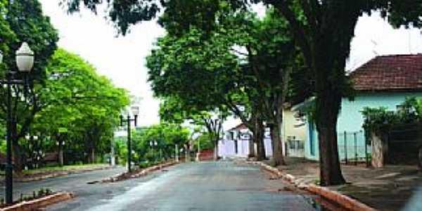Imagens do Distrito de Barão de Lucena - pR