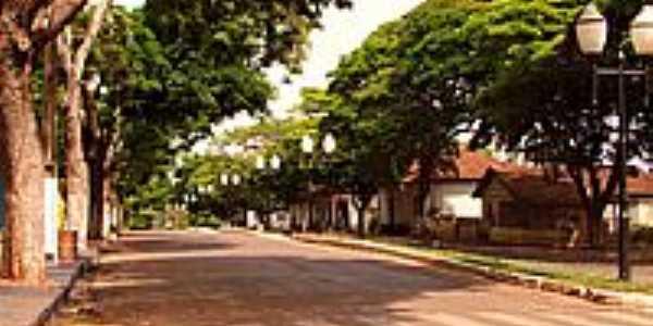 Av.Principal de Barão de Lucena-Foto:Edson Cavalari