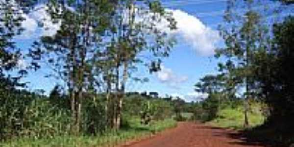 Estrada para Bela Vista do Piquiri-Foto:Claudenir Lourençato
