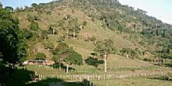 Fazenda Pedra Redonda-Foto:401917
