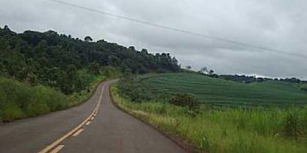 Estrada que interliga Braganey a Iguatu - Por Gasparim