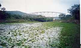 França - Aguapés e a Ponte sobre o Rio Jacuípe em França-BA-Foto:Antº. Carias Frascol…