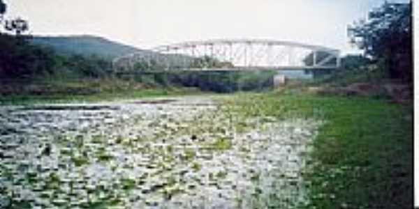 Aguapés e a Ponte sobre o Rio Jacuípe em França-BA-Foto:Antº. Carias Frascol…