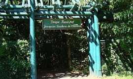 Campo Mour�o - Campo Mour�o-PR-Entrada do Parque Joaquim Teodoro de Oliveira-Foto:Elio Rocha