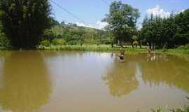 Campo Mourão - Campo Mourão-PR-Lago no Parque Joaquim Teodoro de Oliveira-Foto:Lindinha Rodrigues