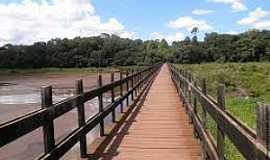 Campo Mour�o - Campo Mour�o-PR-Passarela no Parque Joaquim Teodoro de Oliveira-Fotojonashenriquelima.