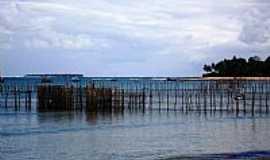 Gamboa - Sistema de pesca em Gamboa-BA-Foto:Renovatiotur Náutica…