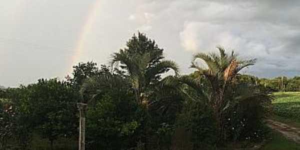 Imagens do Distrito de Capão Bonito no Município de Lapa-PR