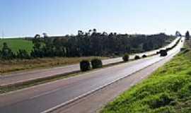 Carambeí - Rodovia Carambei por fofaomusic
