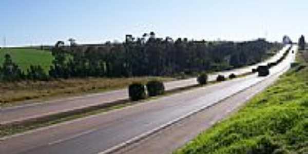 Rodovia Carambei por fofaomusic