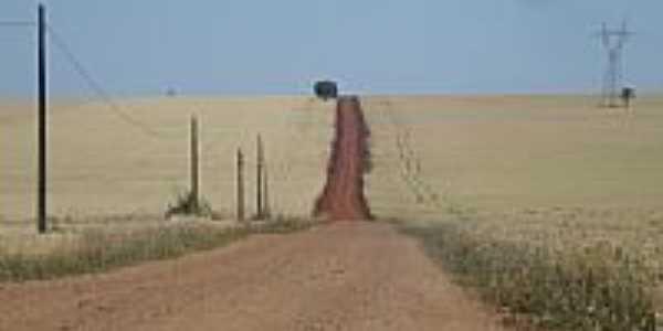 Estrada do Caramurú-Foto:josé carlos farina