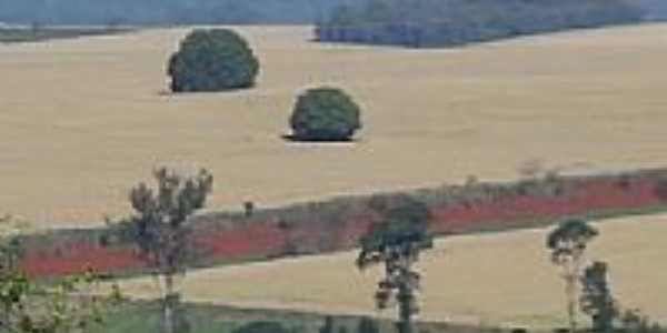 Paisagem rural de Caramurú-Foto:josé carlos farina