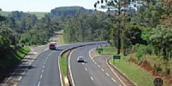 Viaduto do Caramuru-Foto:josé carlos farina