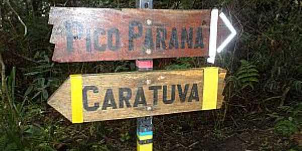 Caratuva - PR