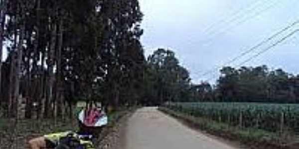 Estrada em Catanduvas do Sul-Foto:cicloturistaurbano.