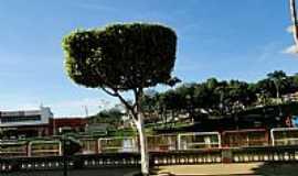 Gandu - Gandu-BA-Praça e o rio no centro da cidade-Foto:Caio Graco Machado