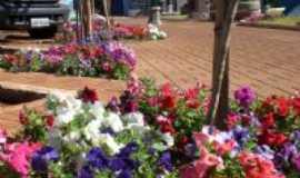Corbélia - Ruas floridas, Por Zenilda