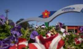 Corb�lia - O portal de entrada mostra a beleza das flores e tamb�m das cachoeiras existentes no munic�pio, Por Zenilda (diretora do depto de turismo do munic�pio)