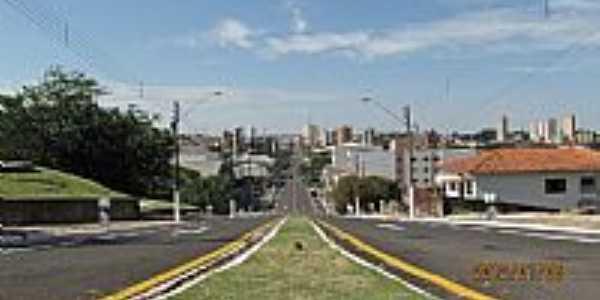 Cornélio Procópio-PR-Avenida Principal-Foto:E. Colman
