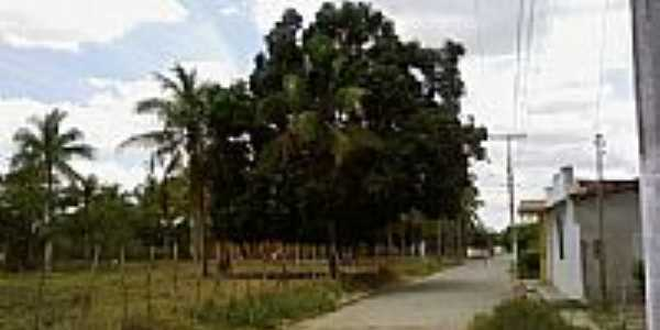 Rua in Governador Mangabeira por Carlinhis bra
