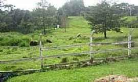 Doce Grande - Área rural em Doce Grande-Foto:Cilmara GM