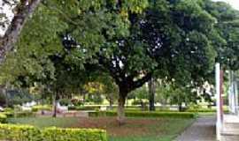 Enéas Marques - Enéas Marques-PR-Praça Municipal-Foto:Giovanio Gonçalves