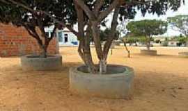 Guajeru - Praça da Prefeitura de Guajeru-BA-Foto:jeovaci