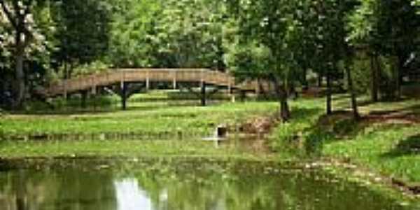 Ponte sobre o lago do Pesque Pague de Faxina-Foto:@DiegoFaxina2