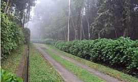Fênix - Entrada do Parque Estadual Vila Rica do Espírito Santo - Fênix/PR