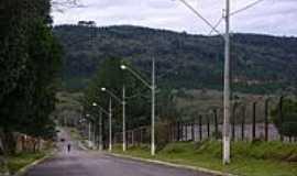 Fernandes Pinheiro - Avenida Ivo Leão em Fernandes Pinheiro-Foto:ThiagoF.