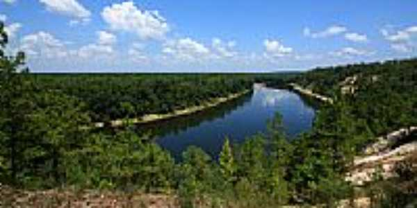 Rio Apalachicola