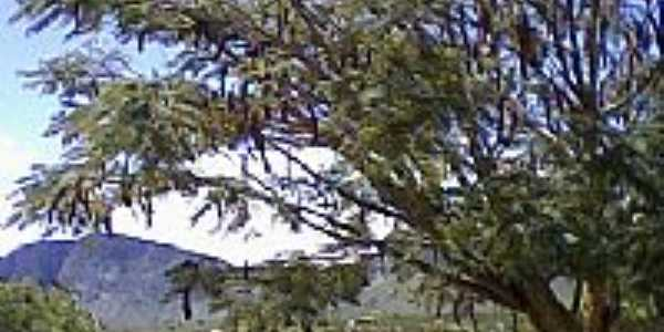 Serra Sincoré visão de Guiné-Foto:Atilio.brito
