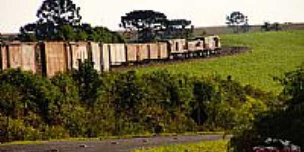 Trem indo para Irati-Foto:daniel.batera.rr
