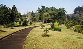 Harmonia - Jardim