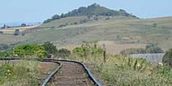 Linha Férrea-Foto:josé carlos farina 3