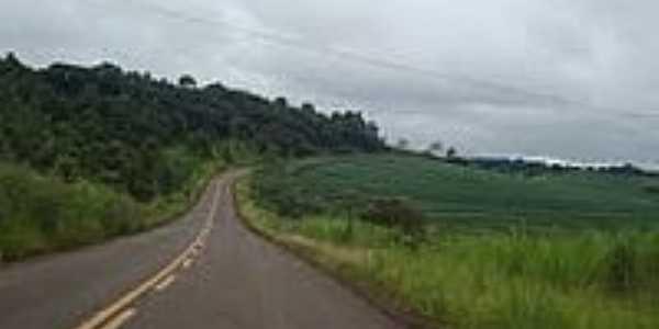 Estrada de Iguatu-Foto:Gasparim